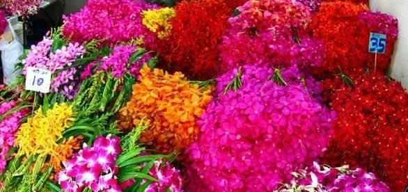 Bangkok Flower Market.