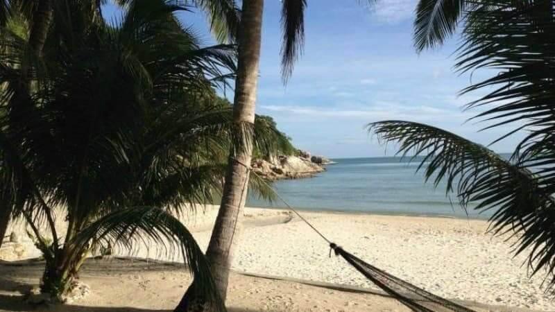 beach, sea, palm trees, Thailand