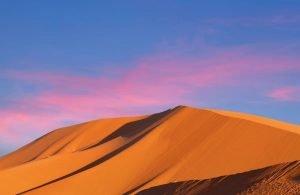Sahara Desert Trip