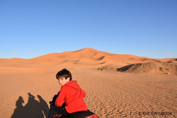 Kid on a dromedary, Morocco desert