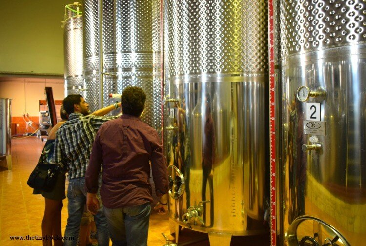 A Gift from the Earth: Cretan Wines