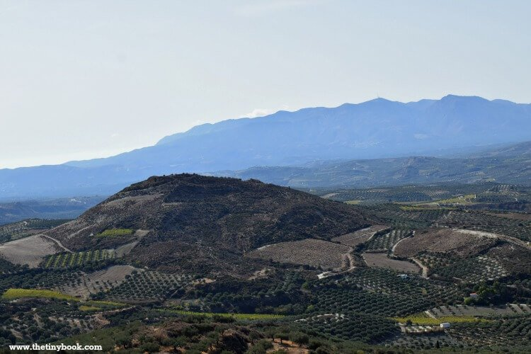 The area of Peza, wine region of Heraklion.