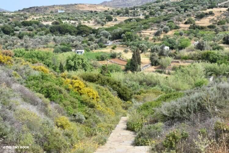 Valley between Kourolochori and Melanes, Naxos Island in Greece.