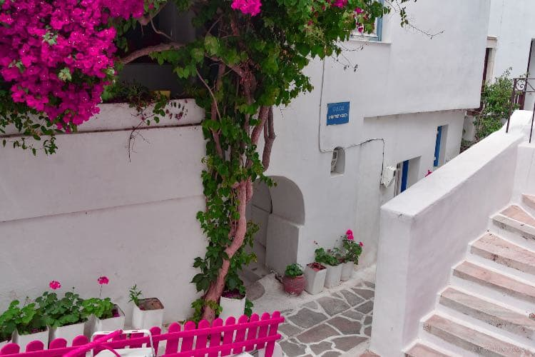White walls, houses, pink flowers, old town Naxos island