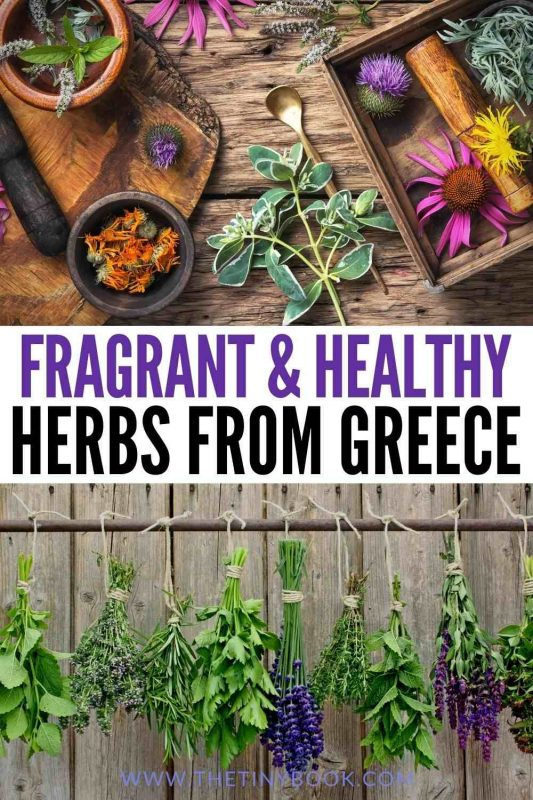 Herbs from Greece