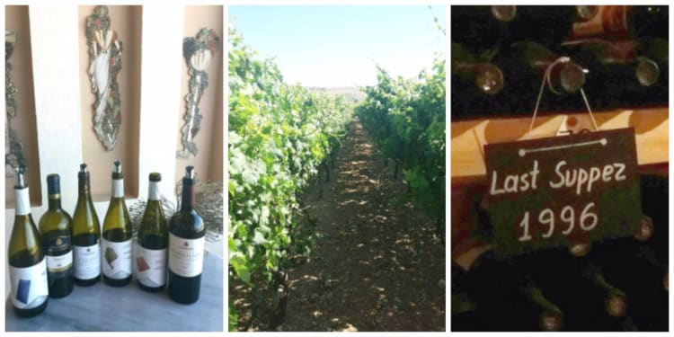 Lyrarakis Crete -Wine selection - The vineyards - The cellar.