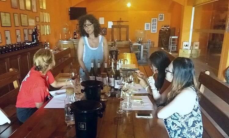 Wine tasting Lyrarakis Crete