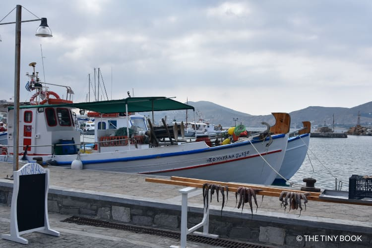 Naoussa fishing port
