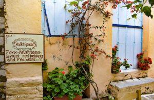 GREECE - NAXOS ISLAND - HALKI - SHOP