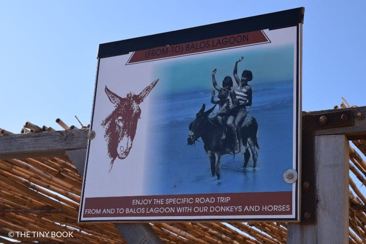 Horses Balos beach.