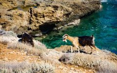 Balos Beach Crete: Complete Insider's Guide