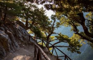Best things to do in Chania Region, Crete - Samaria Gorge