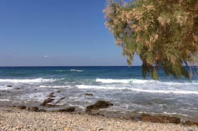 sea, waves, pebbles, beach, tree - Milatos East Crete