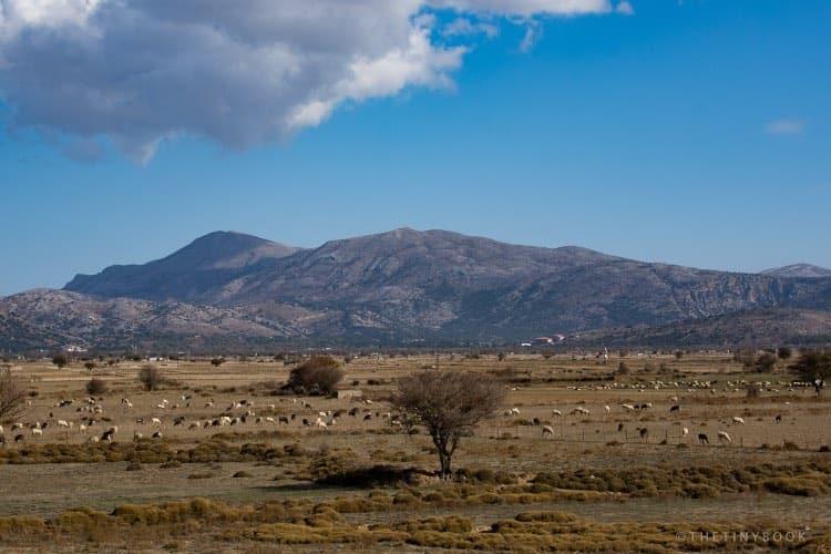 Lasithi Plateau, Crete.