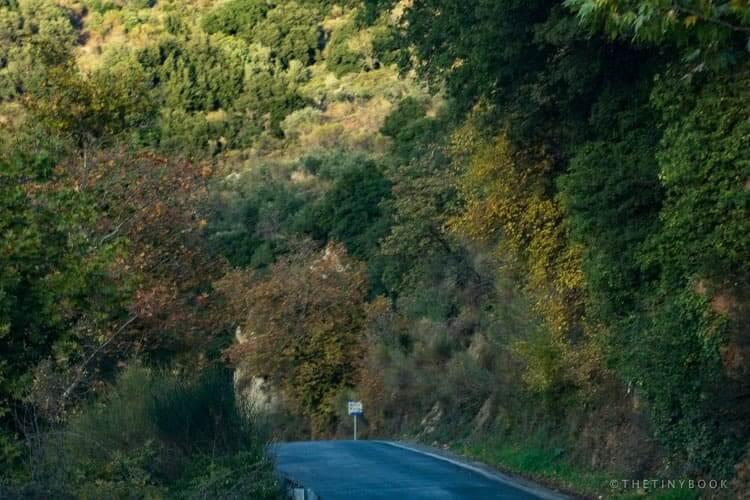 Road between Kera and Krasi near the Lasithi plateau. Lush vegetation.