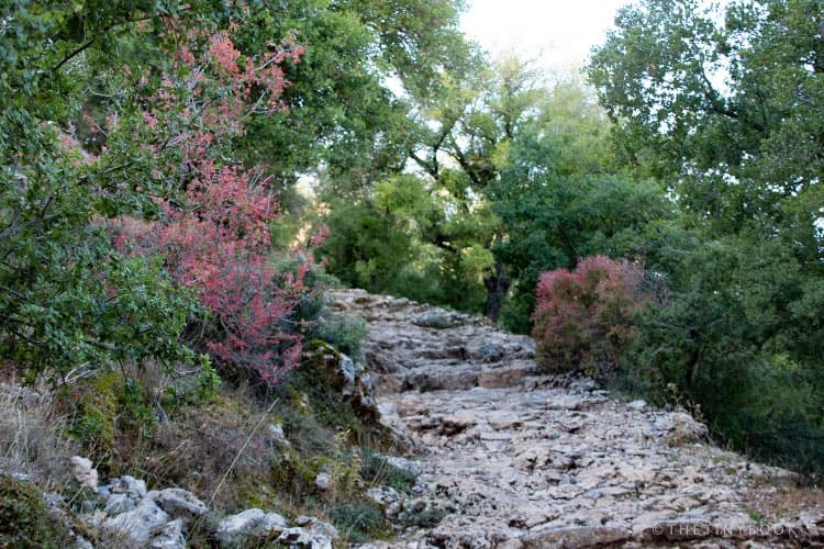 path to reach the Cave of Zeus.