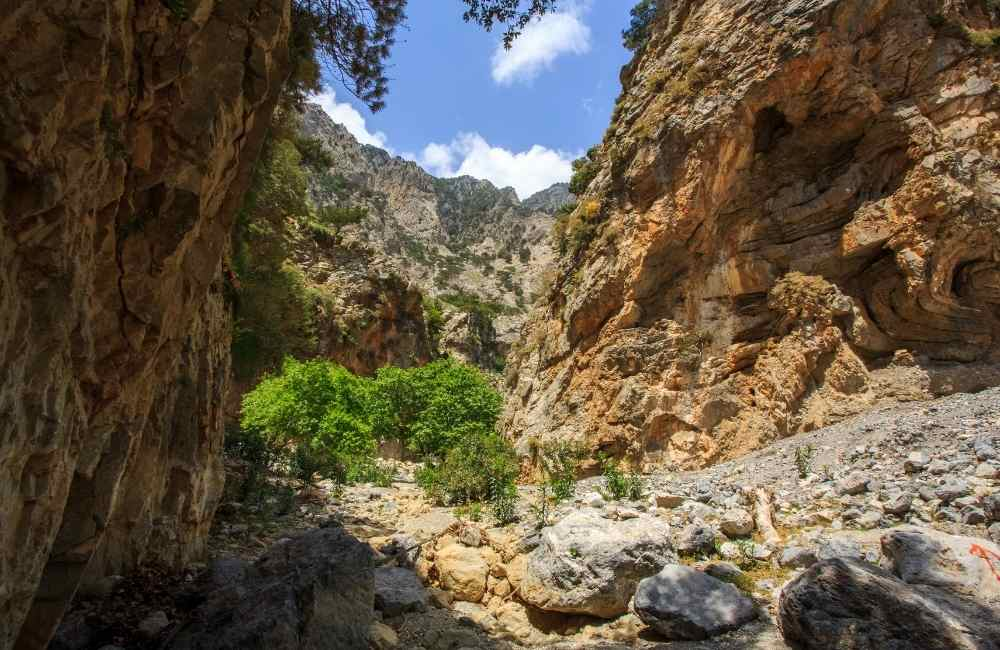 Gorge of Rouvas - Heraklion - Gorges in Crete
