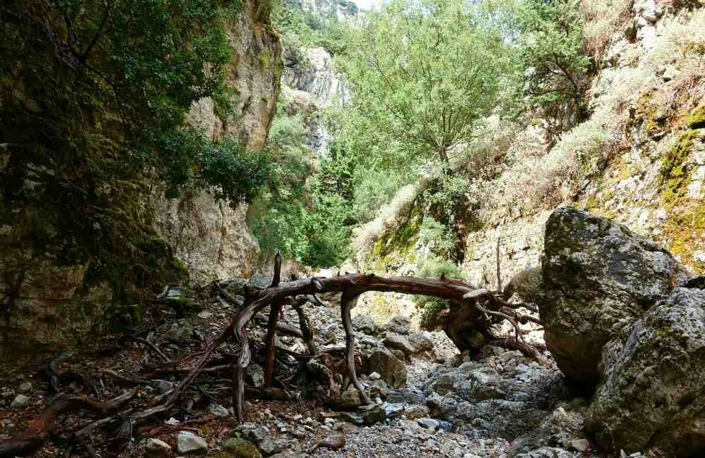 Imbros-Gorge-Gorges-in-Crete